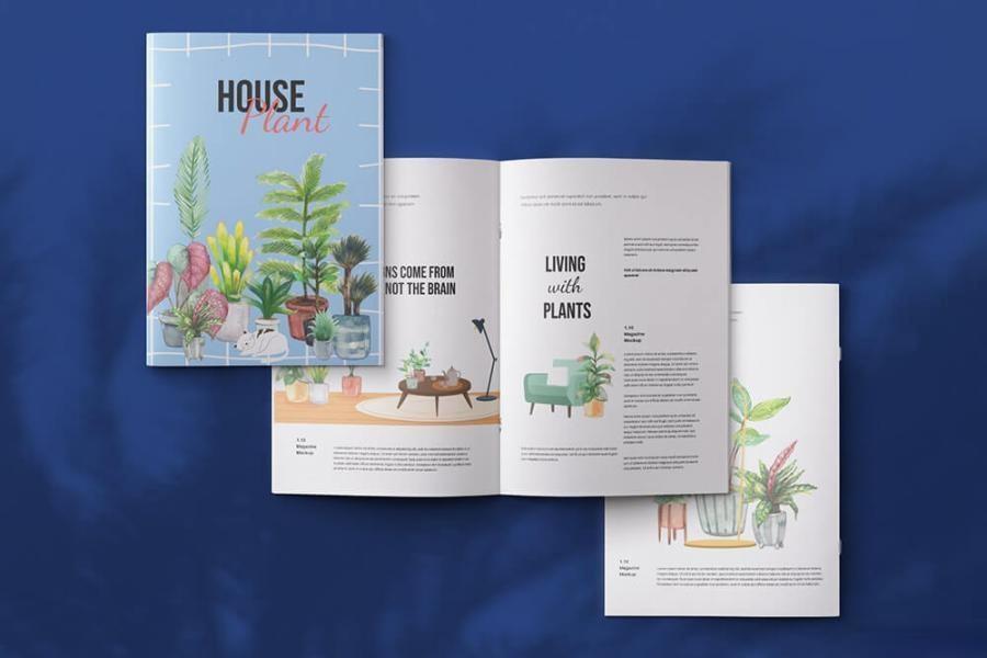 室内植物绿植花卉装饰水彩插画png插画素材插图(8)