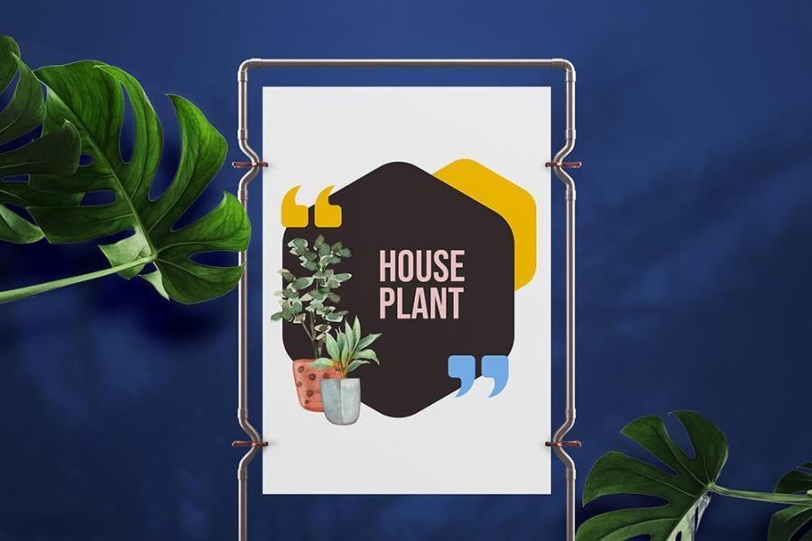 室内植物绿植花卉装饰水彩插画png插画素材插图(3)