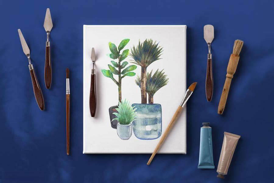 室内植物绿植花卉装饰水彩插画png插画素材插图(4)