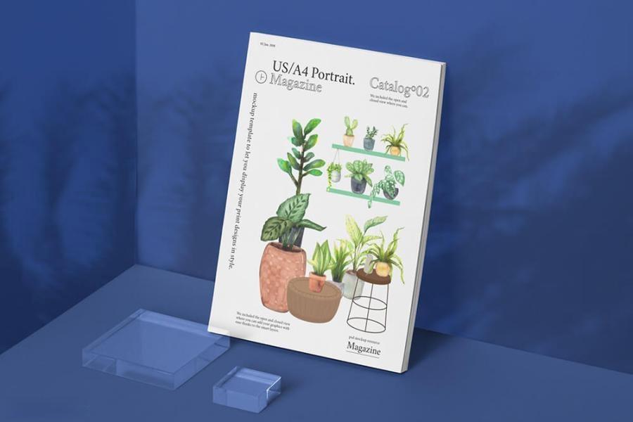 室内植物绿植花卉装饰水彩插画png插画素材插图(5)