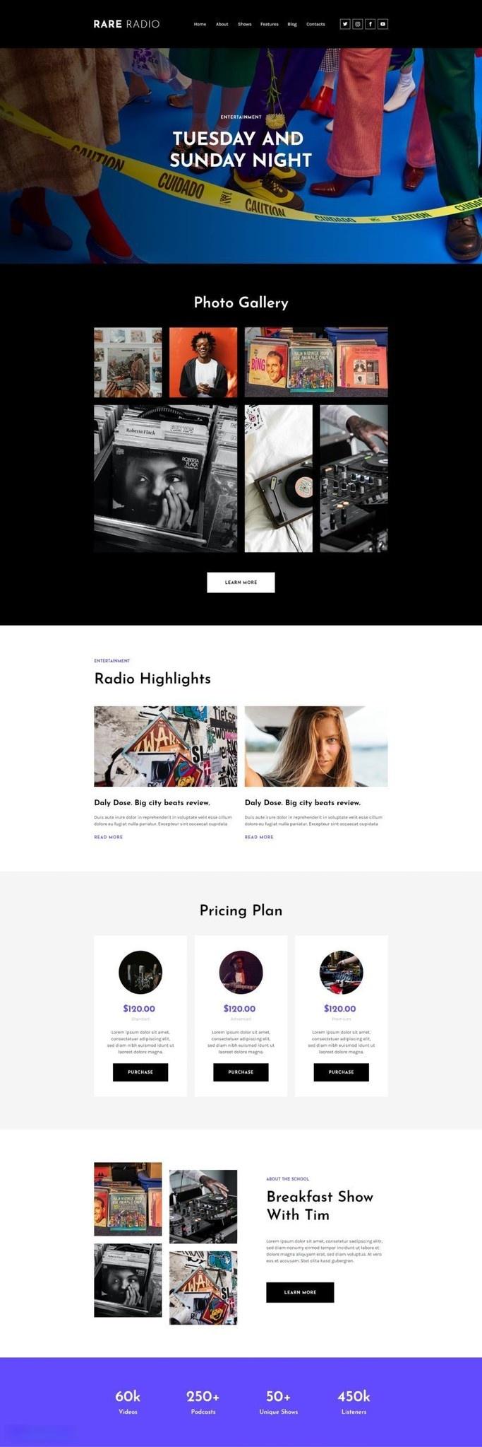 电台音乐网站WordPress主题Elementor模板插图(2)