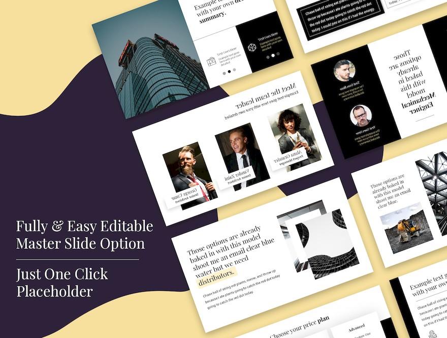 黑白配色的简洁商业PPT模板[PowerPoint/170KB]百度网盘下载插图(2)