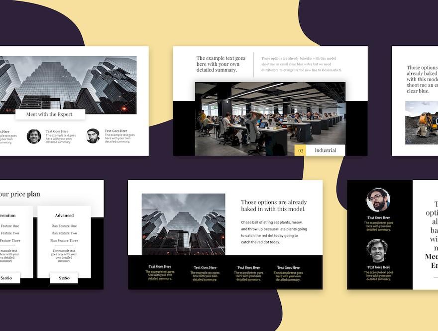 黑白配色的简洁商业PPT模板[PowerPoint/170KB]百度网盘下载插图(3)